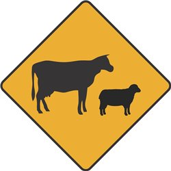 WARNING CATTLE STOCK COW SHEEP