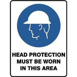 MANDATORY HEAD PROTECTION