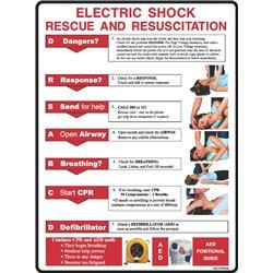 CPR ELECTRIC SHOCK RESUSCITATION