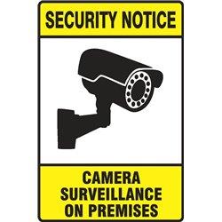 SECURITY CAMERA SURVEILLANCE ON PREMISES